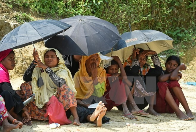 Le Conseil de sécurité de l'ONU demande au Myanmar l'arrêt des violences contre les Rohingya - ảnh 1