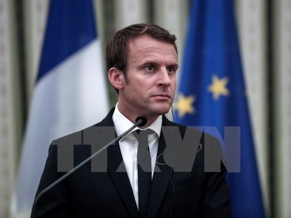 France : le budget 2018 de la Défense en hausse de 1,8 milliard d'euros - ảnh 1