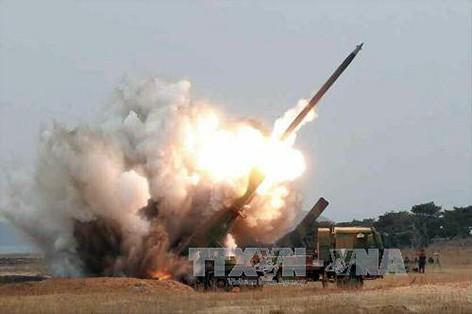 Vives tensions en péninsule coréenne - ảnh 1