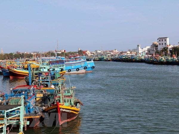 Mesures fortes pour lutter contre la pêche illégale  - ảnh 1