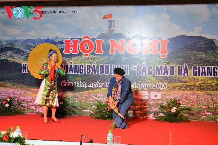Des couleurs de Hà Giang dans le delta du Mékong - ảnh 1