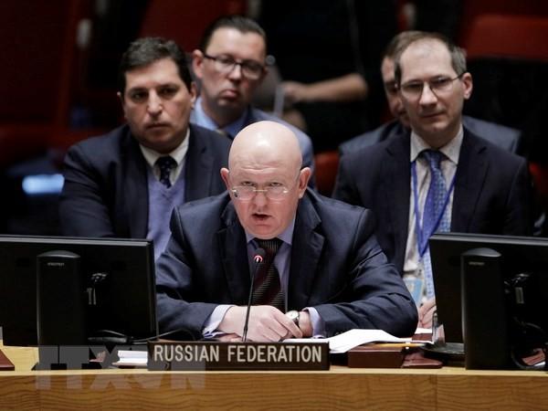 Affaire Skripal: Russes et Britanniques dos à dos à l'ONU - ảnh 1
