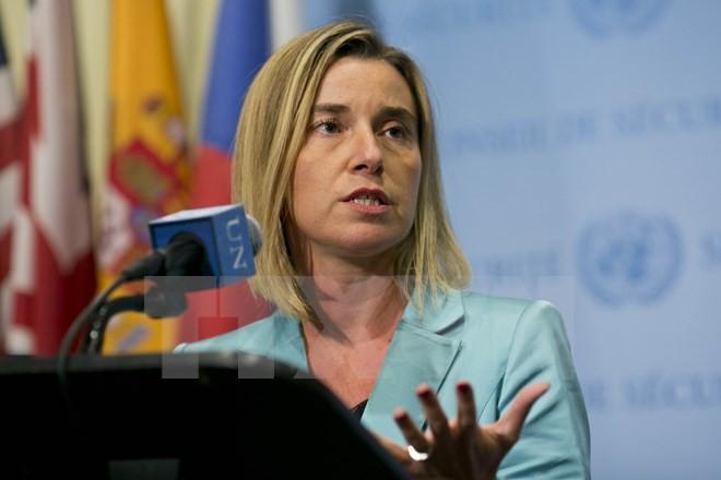L'UE préserve l'accord sur le nucléaire iranien pour des raisons sécuritaires et non économiques - ảnh 1
