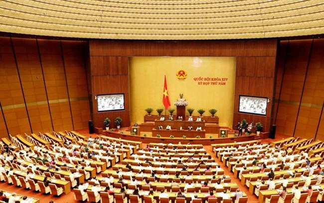 Assemblée nationale: débats sur la cartographie et l'élevage - ảnh 1