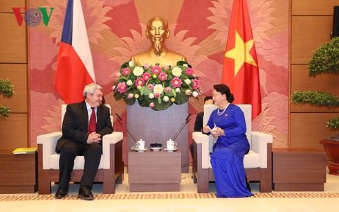 Les dirigeants vietnamiens reçoivent le vice-président de la Chambre basse tchèque - ảnh 1