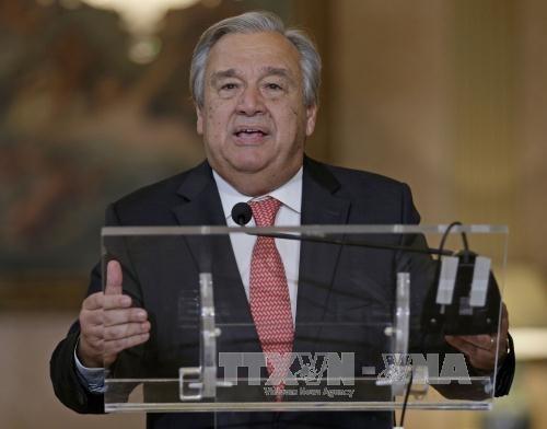 Sommet Etats-Unis/RPDC: l'ONU se félicite de la recherche d'une solution diplomatique - ảnh 1