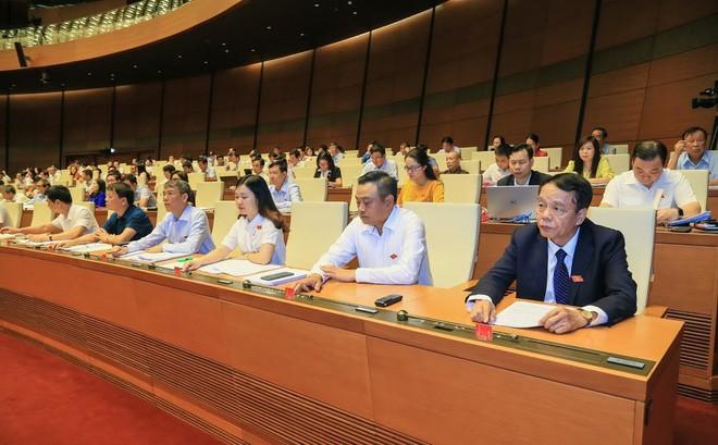 Les députés adoptent le projet du contrôle parlementaire de 2019 - ảnh 1