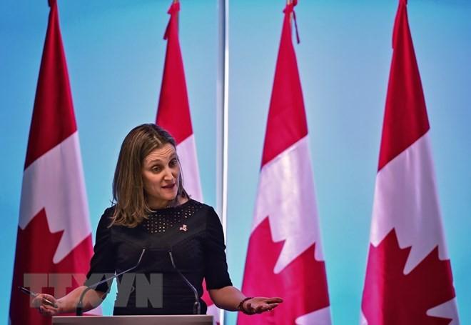 Union sacrée au Canada autour de Trudeau face à Trump - ảnh 1