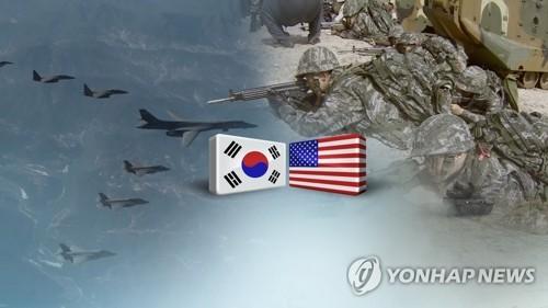 Séoul et Washington suspendent leurs manœuvres conjointes « Ulchi Freedom Guardian »  - ảnh 1