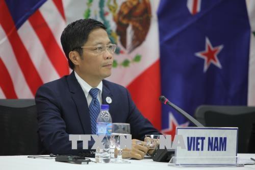RCEP: Activités du ministre de l'industrie et du commerce Trân Tuân Anh - ảnh 1