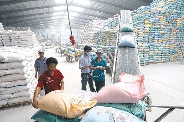 Riz : les exportations vietnamiennes vers la Malaisie ont connu une forte hausse - ảnh 1
