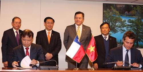 Le vice-Premier ministre Vuong Dinh Huê termine sa visite au Chili  - ảnh 1