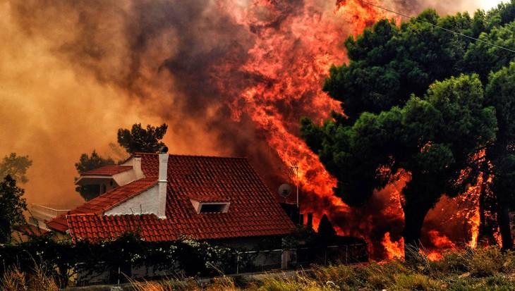 Au moins 50 morts dans de violents incendies en Grèce - ảnh 1