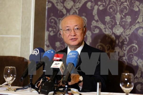 RPDC: pas de signe de dénucléarisation, déplore l'AIEA  - ảnh 1