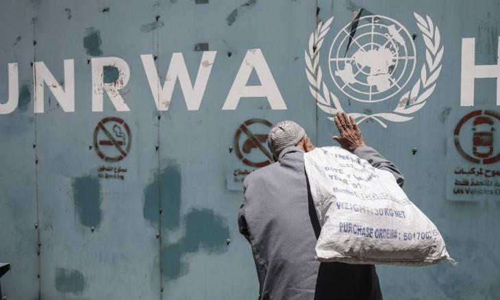 Washington ne va plus financer l'agence de l'ONU pour les réfugiés palestiniens - ảnh 1