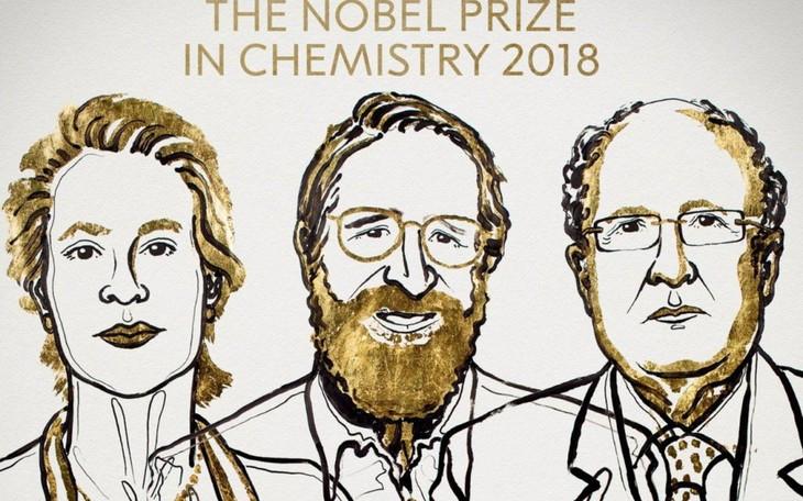 Le prix Nobel de chimie attribué à deux Américains et un Britannique - ảnh 1
