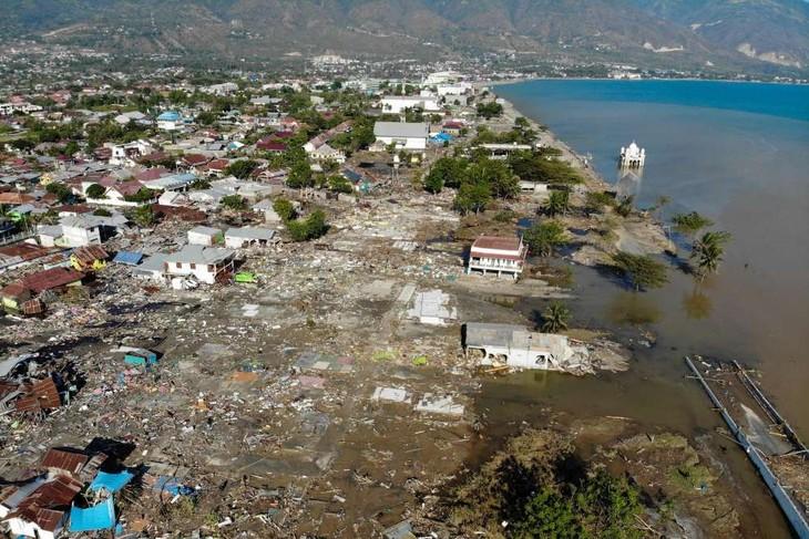 Catastrophe en Indonésie: Le Vietnam apporte son aide - ảnh 1