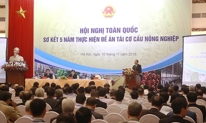 Conférence-bilan de 5 ans de restructuration agricole - ảnh 1