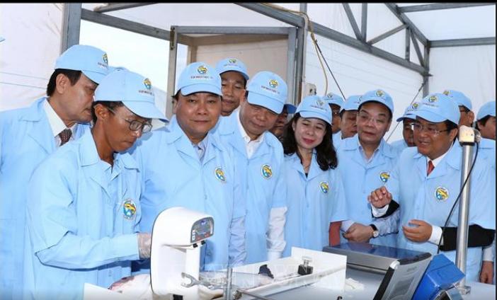 Le Premier ministre visite un élevage de pangas de haute technologie - ảnh 1