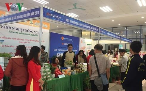 Les étudiants vietnamiens à l'assaut de l'entrepreneuriat  - ảnh 1