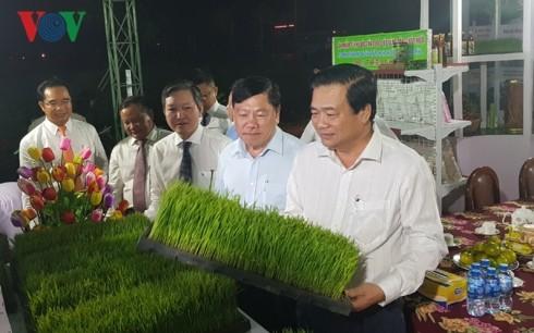 Ouverture du Festival du riz du Vietnam - ảnh 1