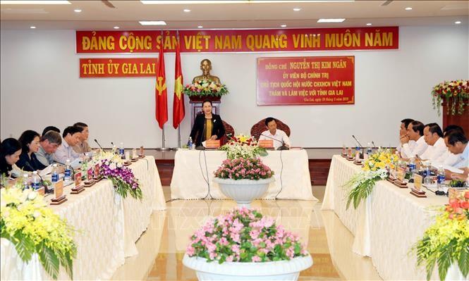 La présidente de l'Assemblée nationale travaille avec les dirigeants de Gia Lai - ảnh 1