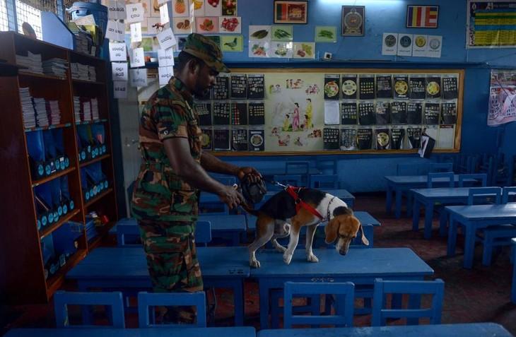 Le Sri Lanka sécurise ses écoles avant leur réouverture lundi - ảnh 1