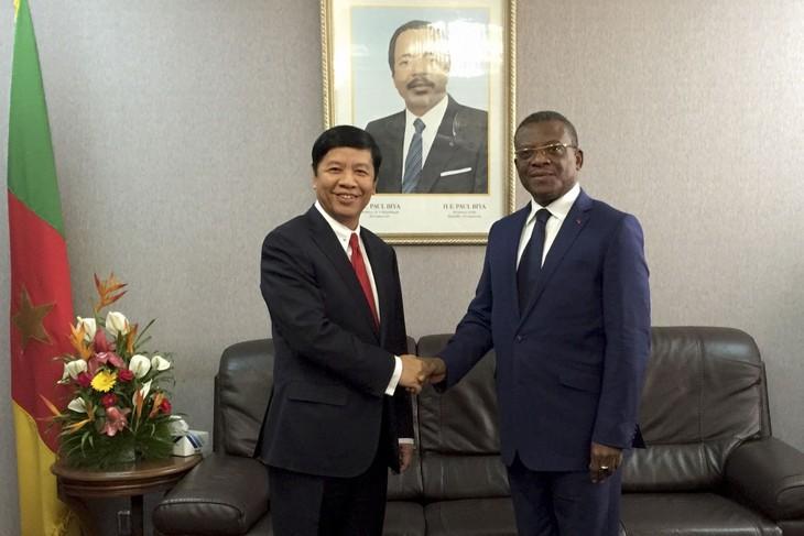 L'envoyé spécial du Premier ministre Nguyên Xuân Phuc travaille au Cameroun - ảnh 1