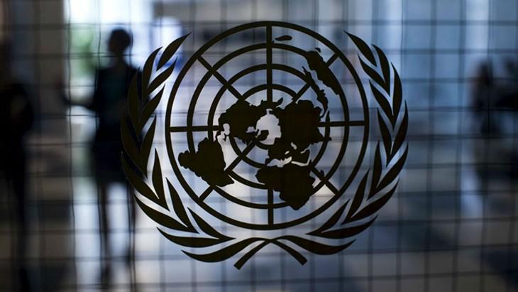L'ONU nomme 17 personnalités pour défendre le développement durable - ảnh 1