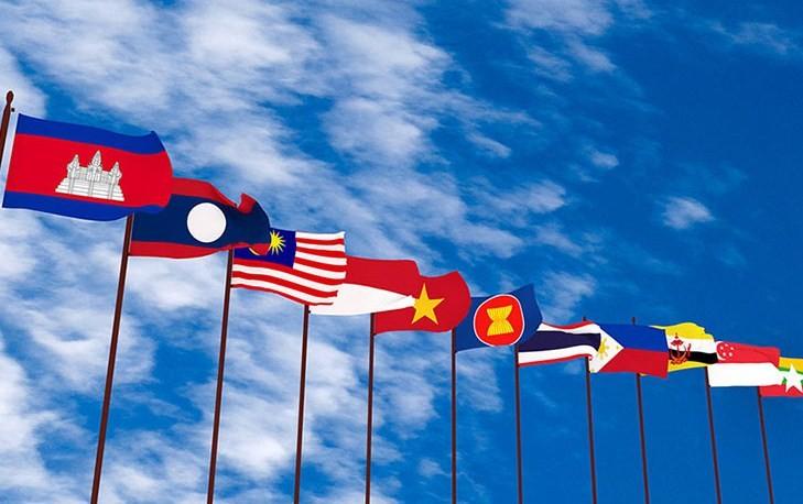 Les 24 ans du Vietnam dans l'ASEAN - ảnh 2