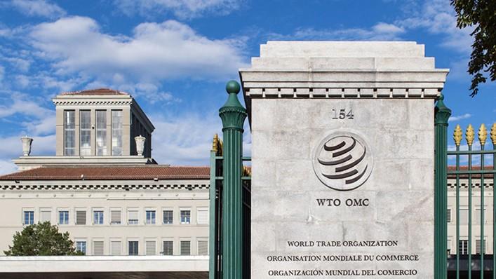 Les Émirats retirent une plainte contre le Qatar auprès de l'OMC - ảnh 1