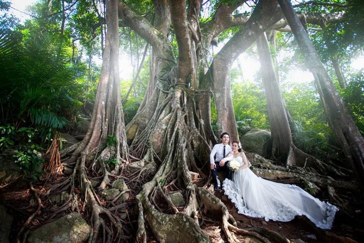 Những địa điểm chụp ảnh cưới đẹp như mơ ở Đà Nẵng - ảnh 8