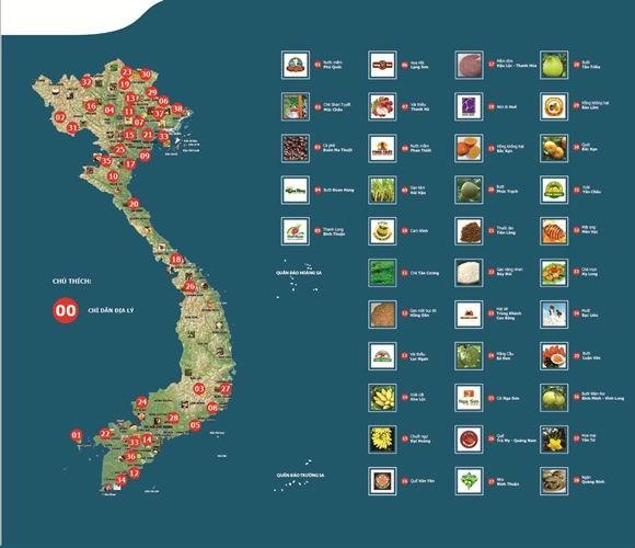 Nông sản Việt Nam được đăng ký bảo hộ chỉ dẫn địa lý đứng thứ 2 Đông Nam Á - ảnh 1