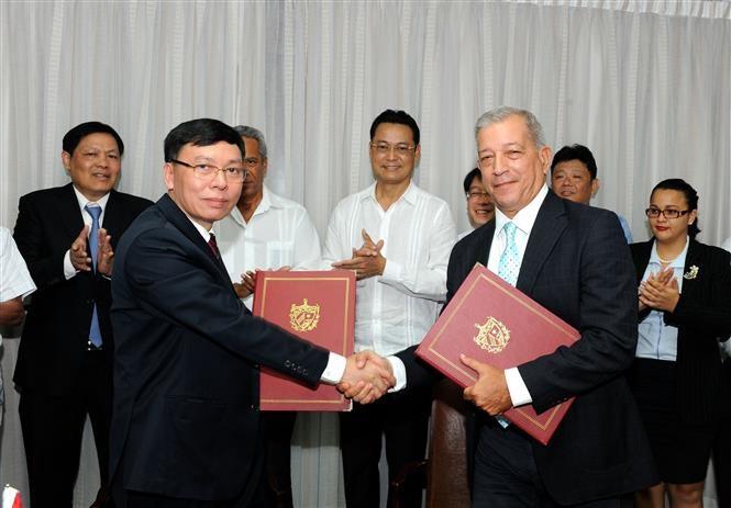 Việt Nam trao tặng 5.000 tấn gạo cho Cuba - ảnh 1