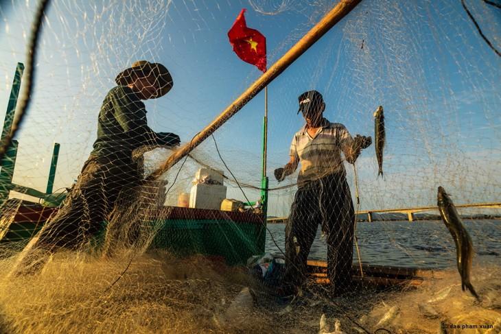 Việt Nam, những bến bờ khác - ảnh 5