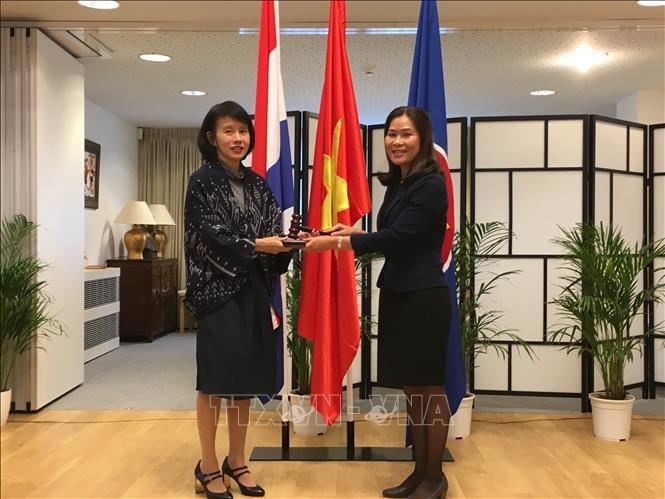 Đại sứ Việt Nam Ngô Thị Hòa chủ trì họp phiên thường kỳ Ủy ban ASEAN tại La Hay tháng 9/2018 - ảnh 2