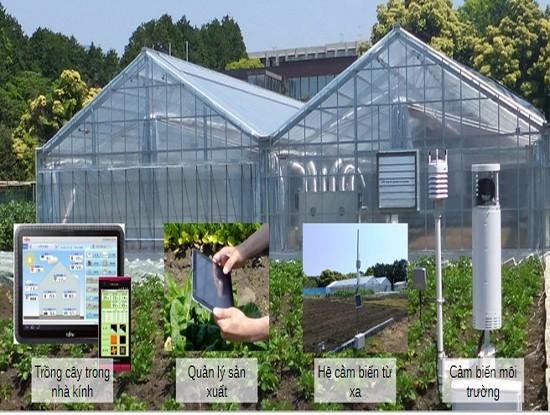 การประยุกต์ใช้เทคโนโลยีสารสนเทศในการพัฒนาการเกษตร - ảnh 1