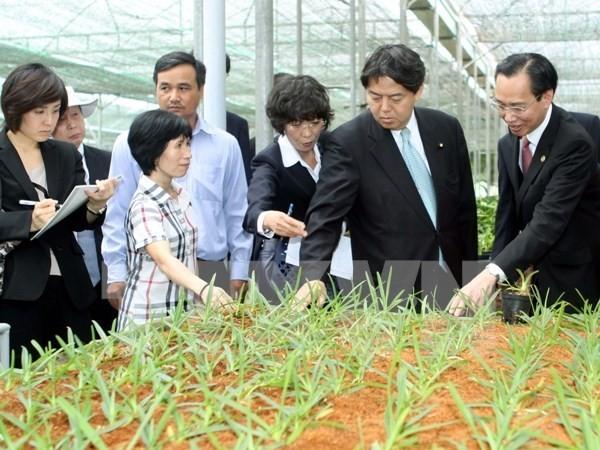 จังหวัดนามดิ่งและจังหวัดมิยะซะกิของญี่ปุ่นร่วมมือพัฒนาการเกษตร - ảnh 1