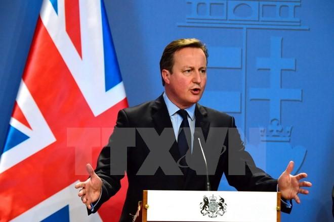 นายกรัฐมนตรีอังกฤษยืนยันว่า จะไม่รีบจัดการลงประชามติเกี่ยวกับการถอนตัวออกจากอียู - ảnh 1