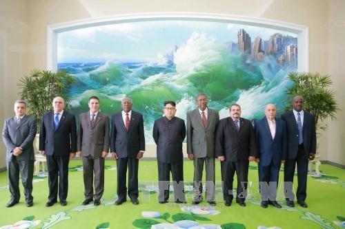 สาธารณรัฐประชาธิปไตยประชาชนเกาหลีและคิวบากระชับความสัมพันธ์มิตรภาพที่มีมาช้านาน - ảnh 1
