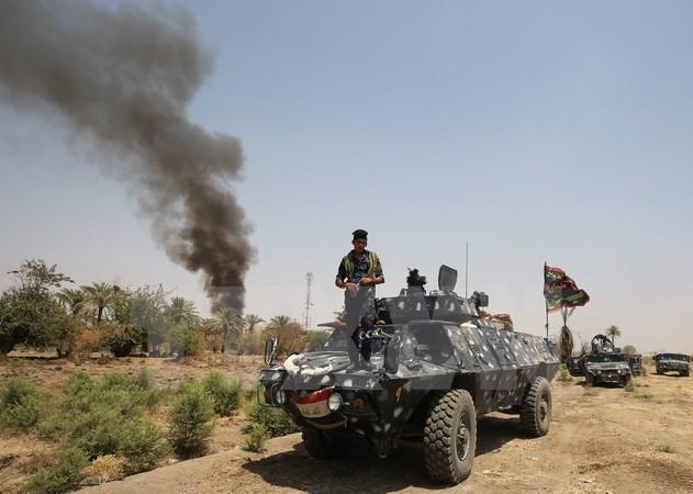 อิรักเริ่มปฏิบัติยุทธนาการยึดคืนจังหวัด Diyala จากกลุ่มไอเอส - ảnh 1