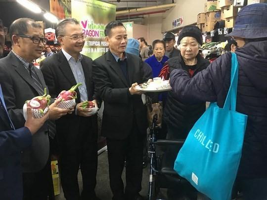 """""""วันงานแก้วมังกรเวียดนาม""""ในประเทศออสเตรเลีย – โอกาสใหม่สำหรับผู้ส่งออกผลไม้ - ảnh 1"""