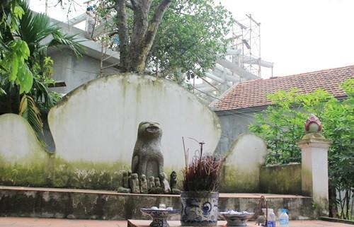 ภาพสุนัขในวัฒนธรรมพื้นเมืองเวียดนาม - ảnh 2