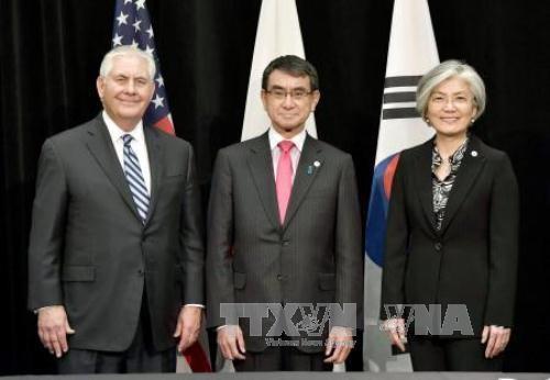 สาธารณรัฐเกาหลีถือการสนทนาเป็นกุญแจสู่การปลอดนิวเคลียร์บนคาบสมุทรเกาหลี - ảnh 1
