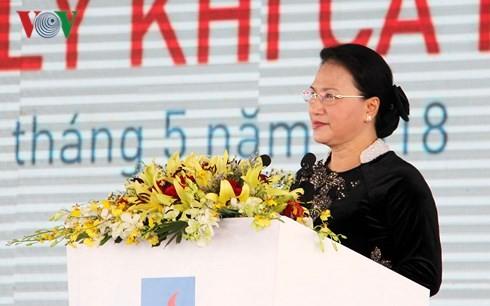 ประธานสภาแห่งชาติเหงวียนถิกิมเงินเข้าร่วมพิธีเปิดโรงงานผลิตก๊าซธรรมชาติก่าเมา - ảnh 1