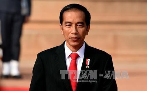 อินโดนีเซียและเวียดนามพัฒนาศักยภาพความร่วมมือด้านเศรษฐกิจและผลักดันการเข้าถึงตลาดของกัน - ảnh 1