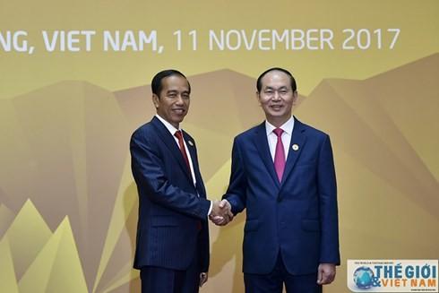 ประธานาธิบดีอินโดนีเซียและภริยาเริ่มการเยือนเวียดนามอย่างเป็นทางการ - ảnh 1