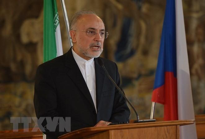 อิหร่านเตือนเกี่ยวกับผลเสียของการยกเลิก JCPOA - ảnh 1
