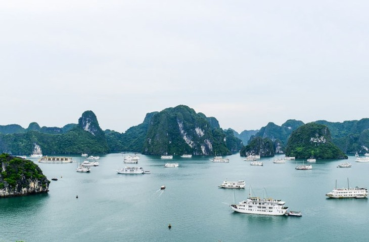 จังหวัดกว๋างนิงพร้อมให้แก่ฟอรั่มการท่องเที่ยวอาเซียน 2019 - ảnh 1