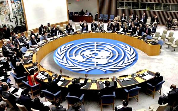 เวียดนามปรารถนาที่จะมีส่วนร่วมมากขึ้นต่อสันติภาพโลก - ảnh 1